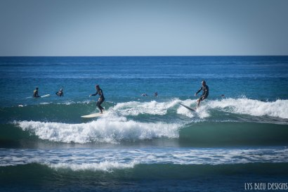 surfing swamis w (50 of 61)