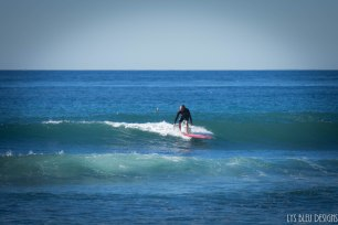 surfing swamis w (6 of 61)