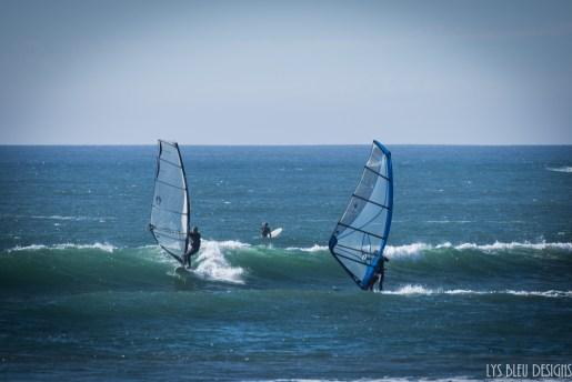 tourmaline windsurfer beach ocean san diego 2