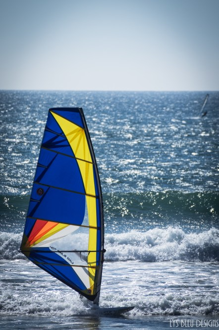 tourmaline windsurfer beach ocean san diego 3