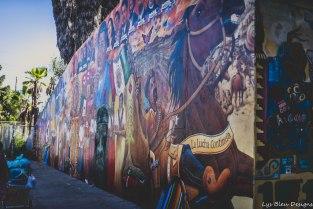barrio logan street art san diego chicano 9