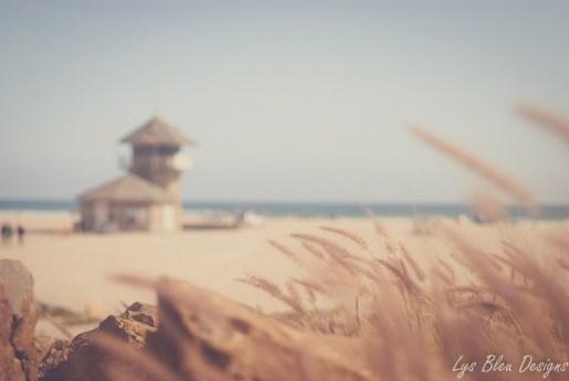 beach coronado