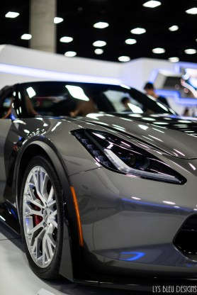 auto show pt 1 (56 of 72)
