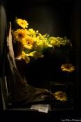 coronado flower show w (104 of 240)