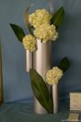 coronado flower show w (149 of 240)