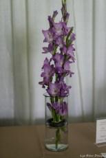 coronado flower show w (157 of 240)