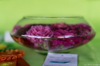 coronado flower show w (168 of 240)