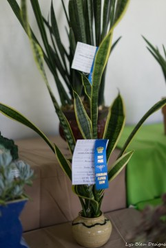 coronado flower show w (209 of 240)