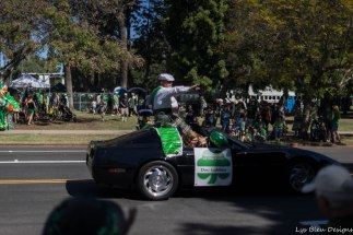 st patrick's parade w (9 of 40)