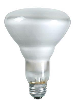 Philips Lamps 65BR30/FL55 120/130V SP 12PK