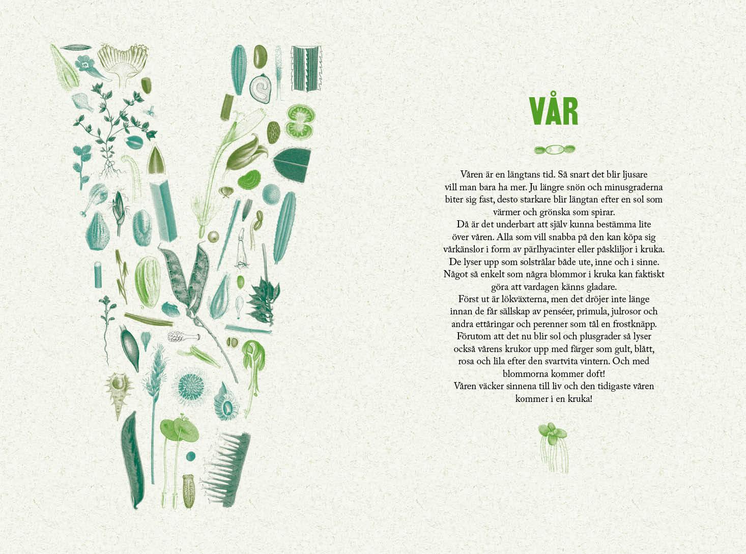 Trädgård i kruka av Annika Christensen och Ulrica Otterling