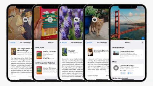 Apple's Visual Look Up is modeled after Google Lens