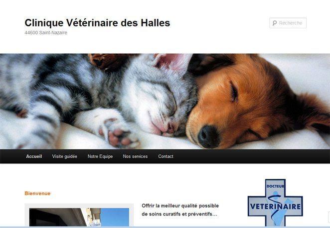 Clinique Vétérinaire des Halles