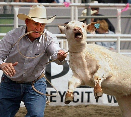 stop-the-rodeo-cruelty