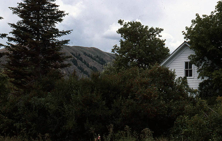 "The house where Ezra Pound was born (1885) in Hailey, Idaho -- photo by Mark Weber -- August 13, 1989 -- ""In a station of the Metro / The apparition of these faces in the crowd / Petals on a wet, black bough."""