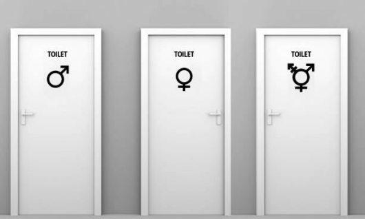 3-toilet-system-university