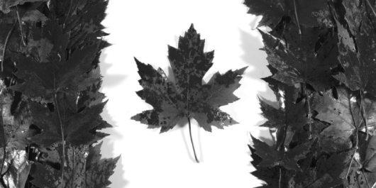 canada-drapeau