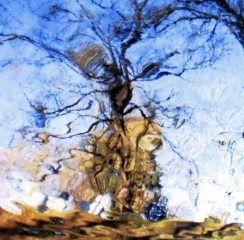 Chris Abrahams / Mike Cooper - Oceanic Feeling-Like