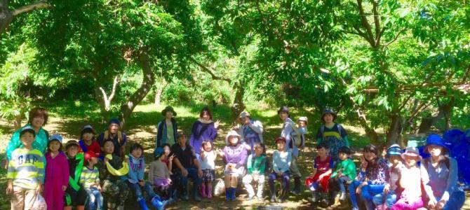 エムジョイ秋の栗拾い収穫会開催しました!
