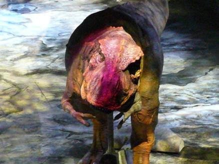ティラノサウルス 1