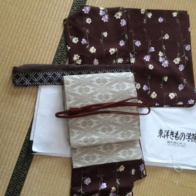 「着物を着て旅をする京都御所と泉涌寺見学」の日の着物コーディネート