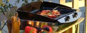 plancha gaz avec poivrons et légumes émincés