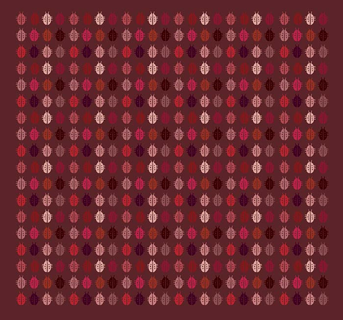 katica_textil_web.jpg