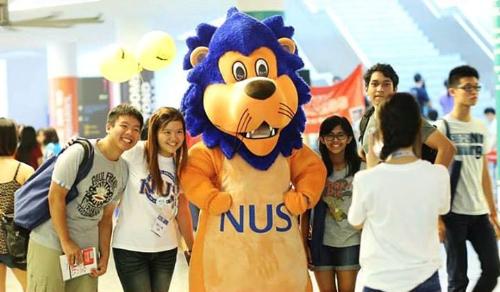 NUS có 15 trường đại học thành viên với hơn 50 chương trình cử nhân, bao gồm 300 chuyên ngành.