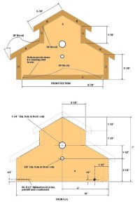 Woodwork Birdhouse Plans Beginners PDF Plans