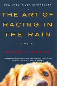 The-Art-of-Racing-in-the-Rain-2019