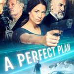 Download A Perfect Plan (2020) Mp4