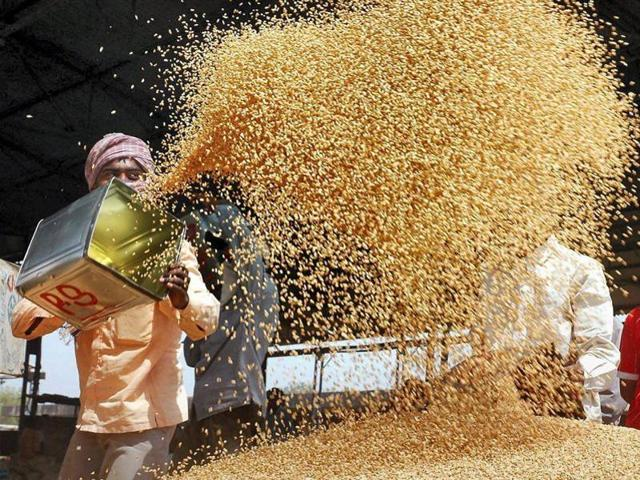 Telugu Latest Agriculture News | Andhra Government To Buy Food Grains