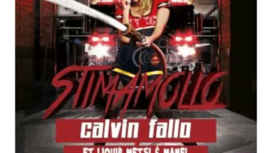 Photo of Calvin Fallo – Stimamollo ft. Liquid Metsi & Manel