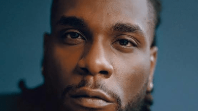 Photo of Burna Boy – Odogwu