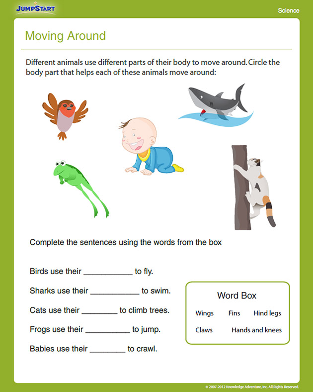 Moving Around View  Free First Grade Science Worksheet