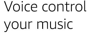 Voice control music