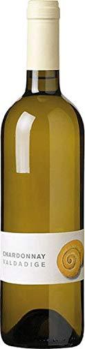 Chardonnay Valdadige - 2019 - 6 x 0,75 lt. - Cantina Valdadige
