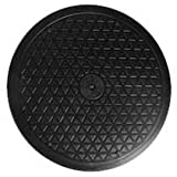 LapWorks 12 inch Heavy Duty Swivel - for Computer Monitors, Potted Plants, Art, and Various Utility uses with Steel Ball Bearings