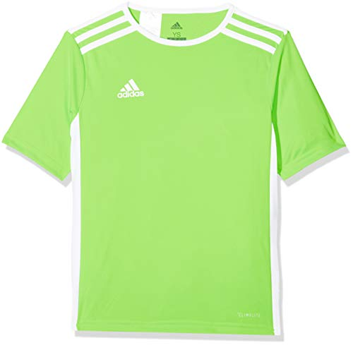 adidas Entrada 18, Maglietta Uomo, Verde (Solar Green/White), XL