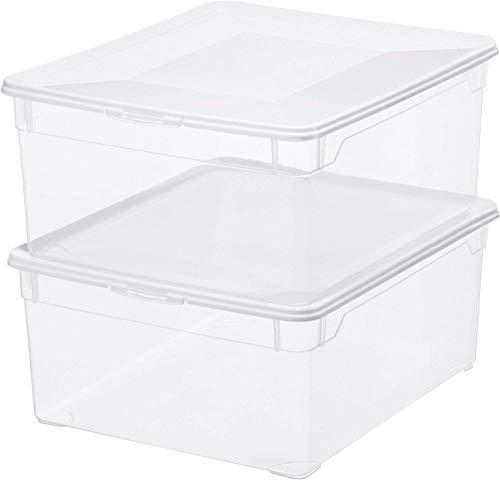 Rotho Clear Set di 2 scatole da 18l con coperchio, Plastica PP senza BPA, Transparente, 2 x 18L, 40 x 33.5 x 17 cm