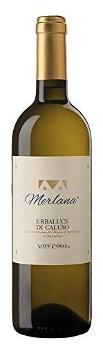 Terredavino - Vite Colte - Erbaluce Di Caluso'Merlana' 0,75 lt.