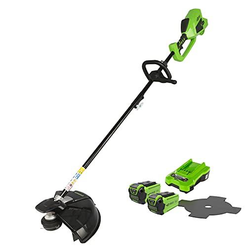 Greenworks Tools Tondeuse à gazon et faux sans fil 2en1 GD40BCK2X (Li-Ion 40V 40cm/25cm largeur de coupe 2mm fil/couteau 5300 rpm poignée réglable moteur brushless avec 2 batteries 2Ah et chargeur)