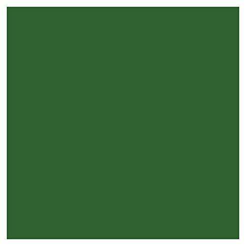 Horizon 5L Laub-grün Ähnl. Ral 6002 Betonfarbe Bodenfarbe Bodenbeschichtung | WO-WE W700 | Garagenfarbe, Kellerfarbe, Fußbodenfarbe für Beton, Zement, Holz, Metall | Farbe für Außen und Innen