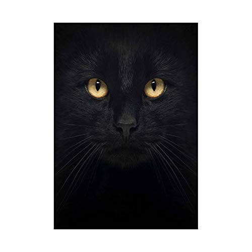 The Art Stop Photo Composition Close UP PET Black CAT FACE Eyes Print B12X8398