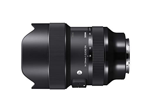 SIGMA 14-24mm F2.8 DG DN | Art A019 | Sony E(FE)マウント | Full-Size/Large-Format ミラーレス専用