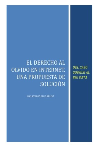 El Derecho al Olvido en Internet: Del caso Google al Big Data