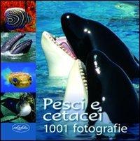 Pesci e cetacei. Ediz. illustrata