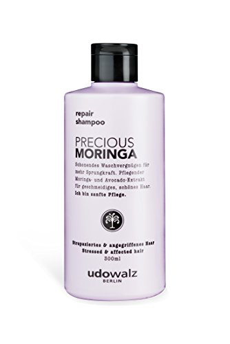 Udo Walz Hairfood Repair Shampoo Precious Moringa, 1er Pack (1 x 300 ml)