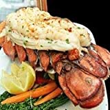 Today Gourmet Foods of NC- Maine Lobster Tails 10-12oz (10 Tails)
