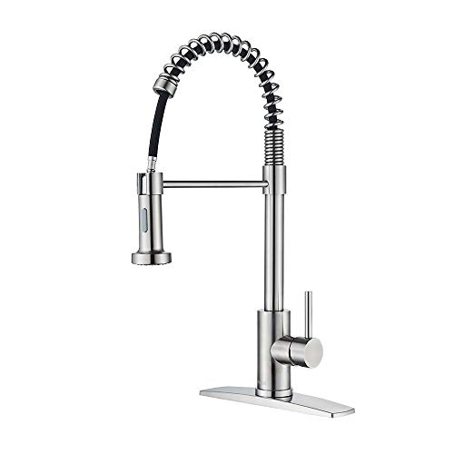 FORIOUS Kitchen Faucet with Pull Down Sprayer, Commercial Spring...